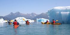 Someday I will kayak in Alaska amid the glacial icebergs! And then maybe live in Alaska...