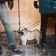 #pug #regentstreet Window Displays, Pugs, Commercial, Creativity, Shops, Street, Character, Inspiration, Shop Local
