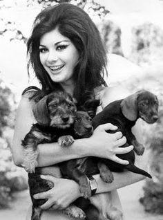 giallo actress edwige fenech + puppies