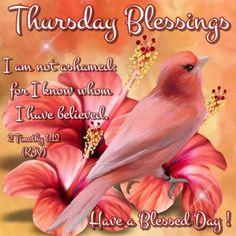 89 Best Thursday Blessings Images In 2019 Thankful Thursday