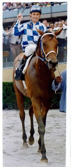 Riva Ridge (4/13/1969 – 4/21/1985) won the 1972 Kentucky Derby & Belmont Stakes. He was owned & bred by the Meadow Stable of Christopher Chenery. Secretariat, the U.S. Triple Crown champion in 1973, was owned & bred by the same stable, & rode by the same jockey, Ron Turcotte, seen here.