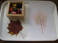leaf rubbings with pebble crayons