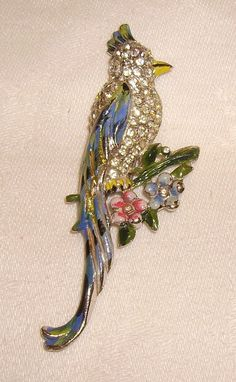 Vintage Coro Enamel & Rhinestone Parrot Fur Clip 1940s from chelseaantiques on Ruby Lane