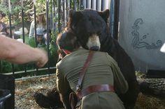 "Michael Fassbender in ""A Bear Named Winnie"" Tv Movie 2004"