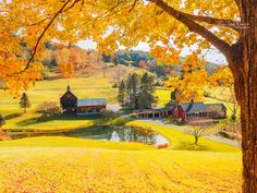 *🇺🇸 Autumn (Woodstock, Vermont) by Wei-San Ooi on 🍂 Oslo, Beautiful World, Beautiful Places, Woodstock Vermont, Farm Pictures, Scenery Wallpaper, Art And Architecture, New England, Places To See