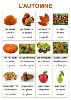 Resultado of vocabulary imagen the autumn .