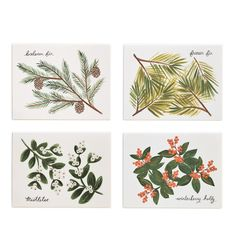 Winter Foliage Set of 8 Folded Cards, 2 of Each Design