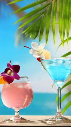 drinking on the beach pictures * drinking on the beach ; drinking on the beach pictures ; drinking on the beach quotes Et Wallpaper, Summer Wallpaper, Beach Wallpaper, Tropical Beaches, Tropical Paradise, Summer Drinks, Summertime Drinks, Beach Photos, Beautiful Beaches