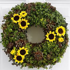 Each one of our living succulent & sunflower wreaths is carefully made by hand, using an assortment of succulent varieties and faux sunflowers.  Each plant is artistically placed into our moss-filled wreath frame, for the most pleasing color and texture combination.  Varieties may vary, as they are selected based on the best quality on-hand.  Please note that wreaths are living, and will continue to grow and fill out over time.  The image reflects how the wreath will arrive, with a variet...