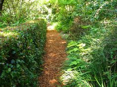How gardeners use their pathways will impact what types of materials they want to use, and how to design their garden paths. Here are some g...