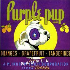 10X10 Tampa Florida Purple Pup Dog Orange Citrus Fruit Crate Label Art Print | eBay