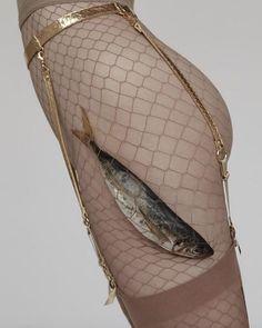 Fishnet interpretation