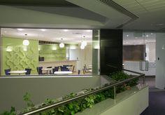 MKDC | BDO Office Perth