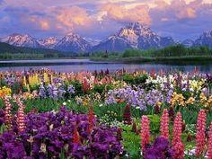 Tetons, Wyoming.