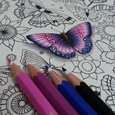 """""""Colorindo borboletas!!! Alguém aí quer ver o video de como fiz?  ..... Material Lapis de cor aquarelável Staedtler  Os meus são da @w_impact ......…"""""""