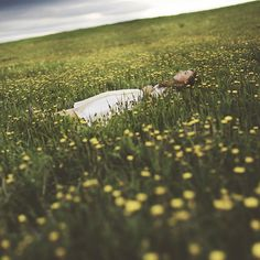 I'll wait and watch the world spin by Tasha Maríe, via Flickr
