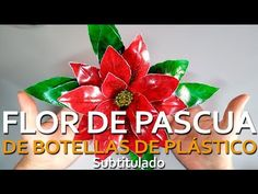 Viejo Pascuero - Yasna Pino - Casa Puchinni - YouTube Plastic Bottle Flowers, Plastic Bottle Crafts, Plastic Spoons, Plastic Bottles, Christmas Wreaths, Christmas Crafts, Christmas Decorations, Christmas Ornaments, Christmas Things