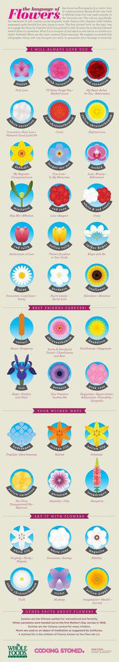 Say something meaningful with the right type of flower! data-pin-do=