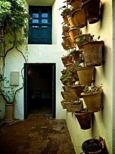 mediterranean porch by Cynthia Lynn Photography Outdoor Spaces, Outdoor Living, Outdoor Decor, Small Garden Inspiration, Garden Ideas, Wall Mounted Planters, Wall Planters, Patio Wall, Spanish House