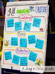 Informational Writing - Anchor Chart and sticky notes First Grade Science, Kindergarten Science, Science Classroom, Teaching Science, Science Activities, Life Science, Classroom Decor, Teaching Ideas, Primary Science
