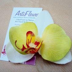 Broche ou barrette fleuron orchidée blanc lime cœur feu