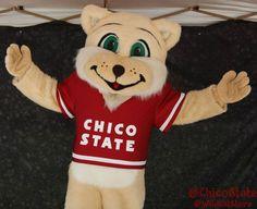 Willie the Wildcat, California State University, Chico