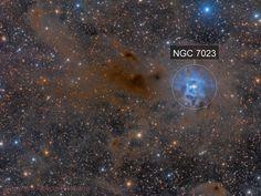NGC 7023  Iris Nebula Reprocessed @DSW