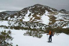En raquetas de nieve por el Parque Natural de Las Ubiñas - La Mesa. Viaje por Asturias.