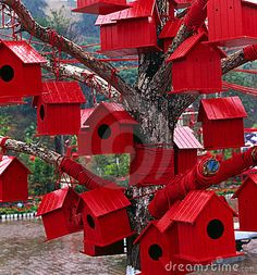 a bunch of brightly coloured birdhouses ~~ all in one tree - so fun!!