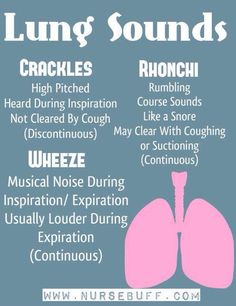 Nursing Mnemonics & Tricks (Assessment and Nursing Skills) Lung sounds to know for interpreting the medical appointments and exams related to breathing, breath sounds lungs, asthma, copd, etc Nursing School Tips, Nursing Career, Nursing Notes, Nursing Tips, Nursing Schools, Nursing Programs, Lpn Programs, Nursing Cheat Sheet, Nicu Nursing