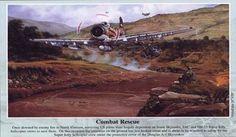 Combat Rescue