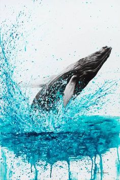 Burleigh Heads Humpback Limited Edition Art Print By Ashvin Harrison Whale Drawing, Whale Painting, Abstract Canvas Art, Acrylic Painting Canvas, Abstract Portrait, Portrait Paintings, Painting Abstract, Art Paintings, Whale Illustration