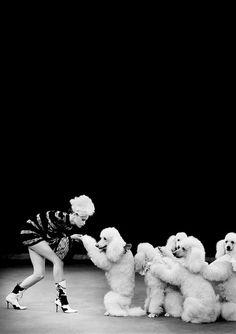 What an amazing pic. The dogs are stunning. {Photographer: Arthur Elgort   Model: Natalia Semanova#