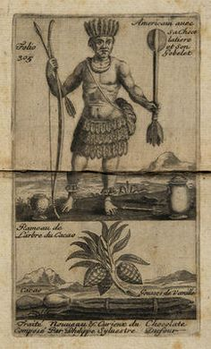 This was not the first that had been heard of chocolate or Theobroma cacao (food of the Gods) in europe. In the middle of the 16th century, ...