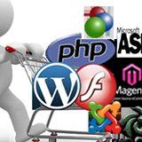Web development and software development