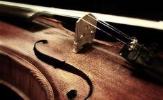 Fondo de Pantalla de Violín, Instrumento, Cuerda, Madera, Mástil