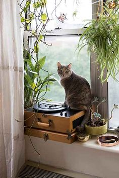 Crosley X UO AV Room Wood Portable USB Vinyl Record Player - Urban Outfitters