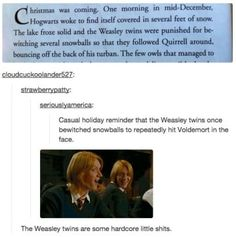 31 Of The Funniest Tumblr Posts About Harry Potter
