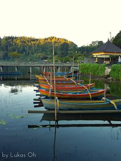 Boat on Calm Lake, Bedugul, Bali #Bali
