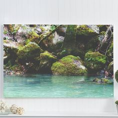 "creek canvas gallery wrap / nature river water tree landscape canvas art print / green teal large canvas wall art / ""mossy emerald creek"""