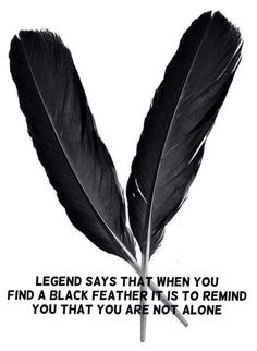 Black Feather Meaning  - Pinned by The Mystic's Emporium on Etsy