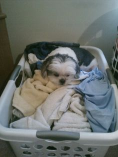 Well, the laundry was clean