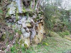 A stone troll munching on rocks? :D http://faeryfolklorist.blogspot.co.uk/2011/04/fairy-graveyard-brinkburn-priory.html