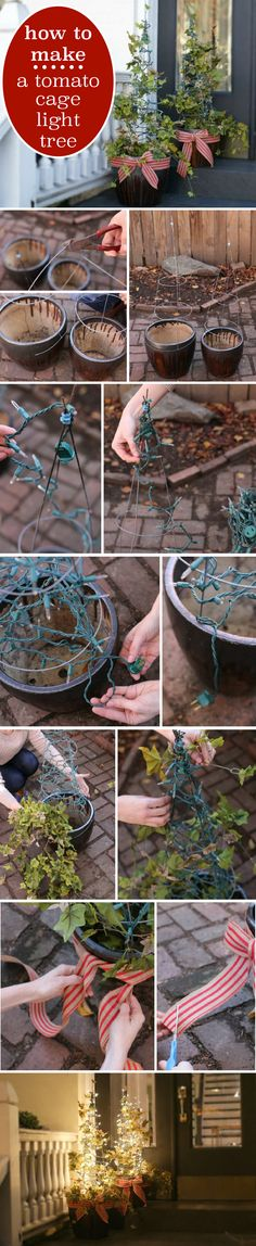 This is a quick, last-minute Christmas decoration idea that is also fairly inexpensive! Make a light tree our of tomato cages for the front lawn or porch. http://www.ehow.com/how_5534725_make-tomato-cage-light-tree.html?utm_source=pinterest.com&utm_medium=referral&utm_content=inline&utm_campaign=fanpage