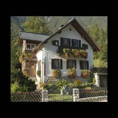 Austrian Home
