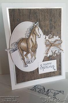 Stamp 'N Hop - Girls - Happy Spring Horse Theme Cards Boy Cards, Kids Cards, Men's Cards, Craft Cards, Masculine Birthday Cards, Masculine Cards, Birthday Greeting Cards, Horse Cards, Homemade Birthday Cards