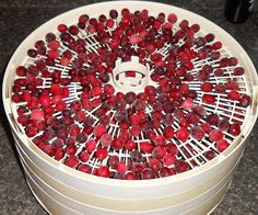 Tutorial on dehydrating cranberries