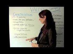 Valores Empresariales y su importancia, por Mediapress Consulting