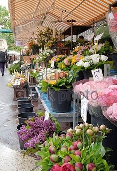 Market stall selling fresh cut flowers in Nice. Cote d'Azur. France -