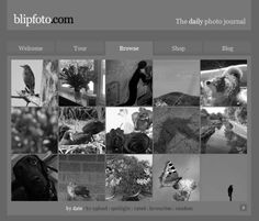 Blipfoto A Beginners Guide to Project 365